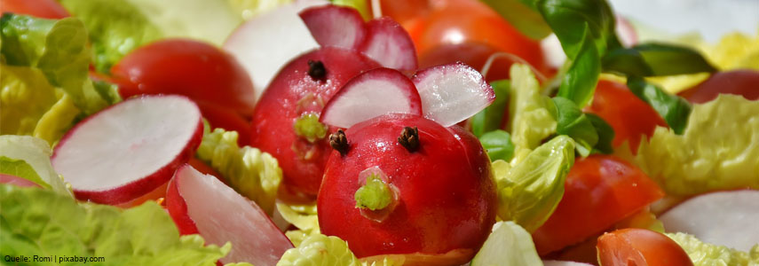 stoffwechseldiaet_salat