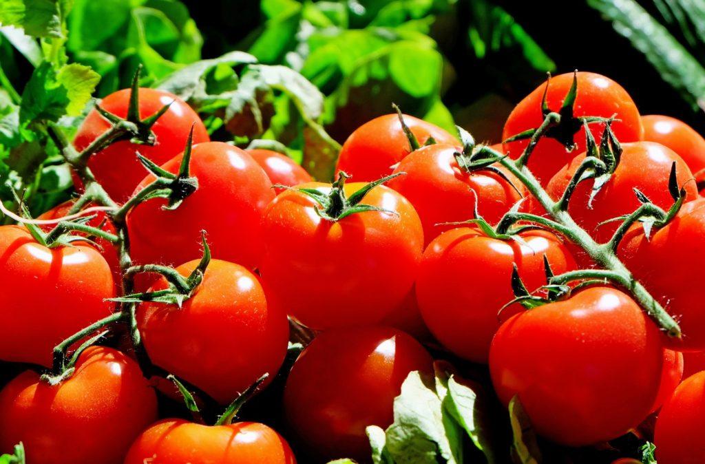 Tomaten   natürlicher Fatburner
