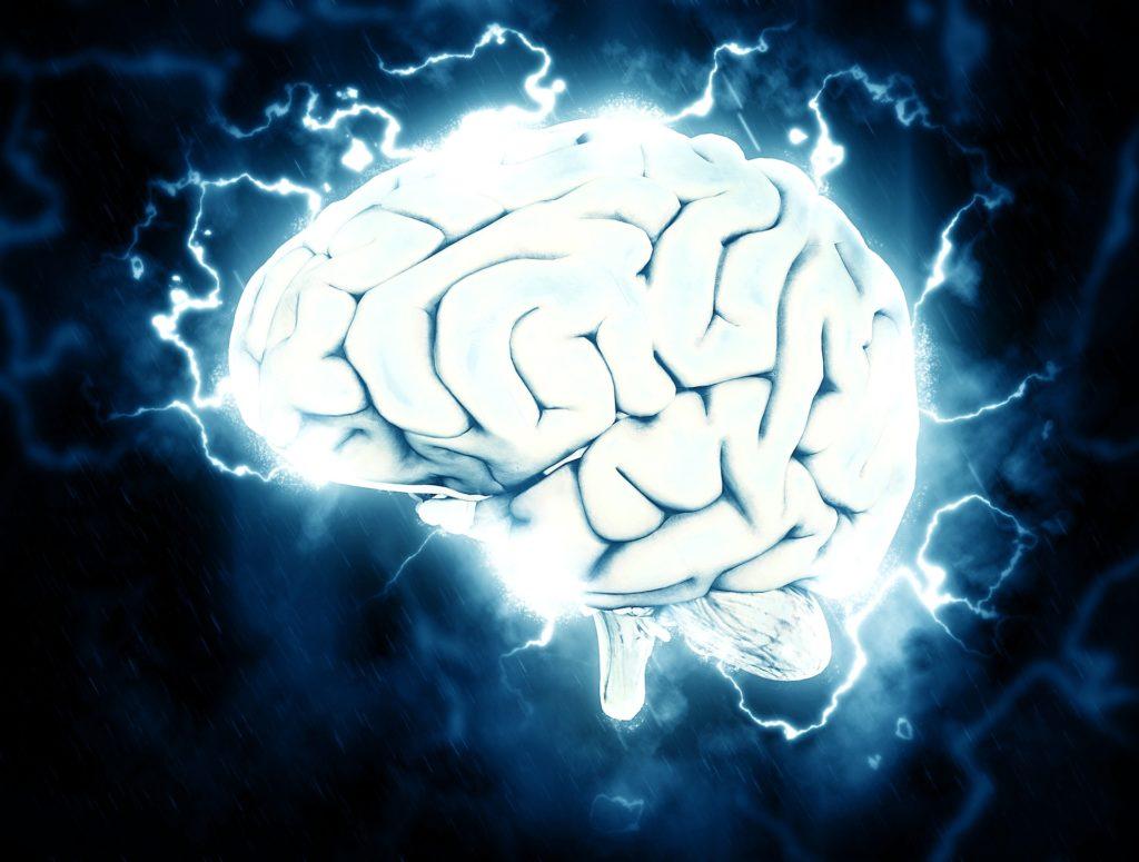 Hormon Leptin Reaktion im Gehirn